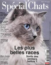 Spécial Chats N° 47 Janvier 2020
