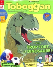 Toboggan N° 451 May 2018