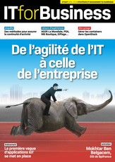 IT for business N° 2 November 2013