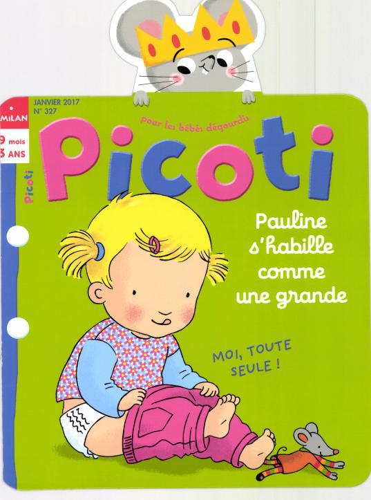 Picoti N° 328 Janvier 2017